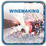 wine making button